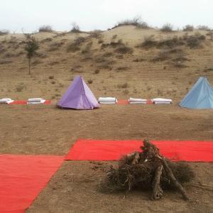 Igloo camping tent